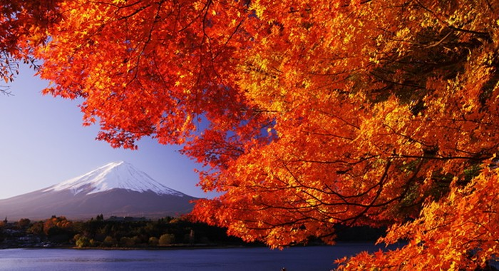 musim gugur autumn jepang tour ke jepang murah 2016 trip ke jepang murah paket tour ke jepang murah tour ke jepang yang murah tour ke jepang paling murah
