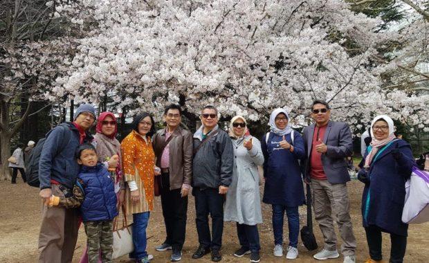 Sakura Grup Tour 2019